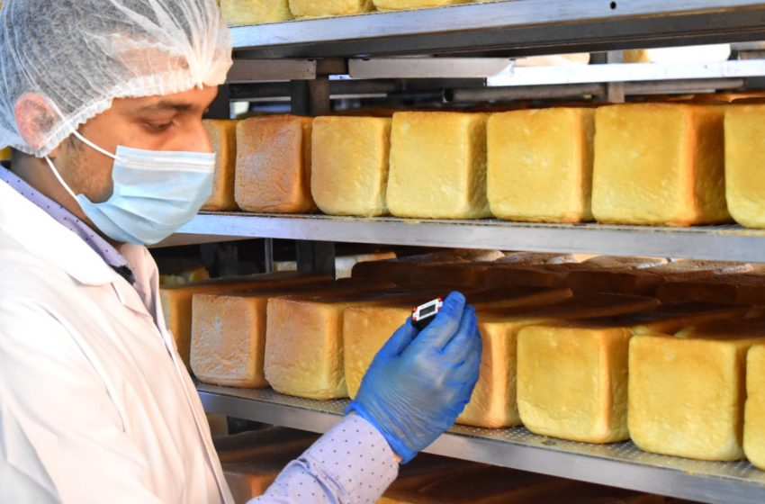 Dubai Bakery trains staff to help fight Covid-19