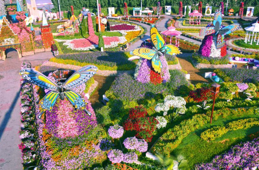 Dubai Miracle Garden offers scents and serenity to pandemic-weary visitors