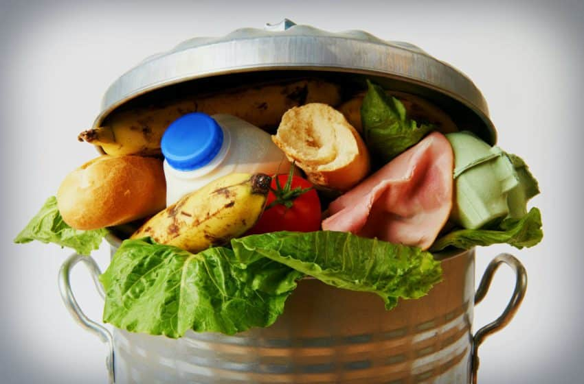 More than 930 million tonnes of food landed in waste bins in a year: UN research